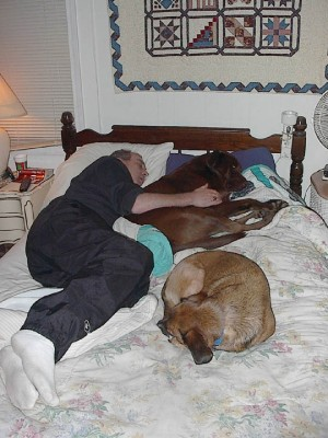 Dennis, Bear and Cocoa asleep on the bed